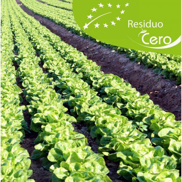 La agricultura ecológica sostenible de la mano de la tecnología Fyneco