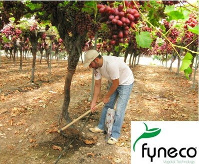 Fyneco promotes Zero Waste agriculture