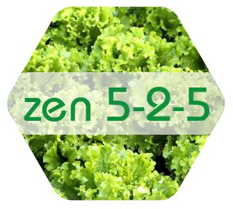 ZEN 5-2-5