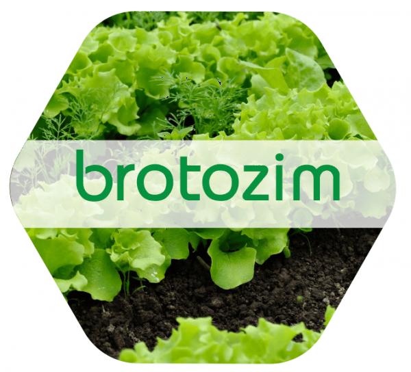 Brotozim