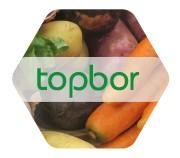 Topbor