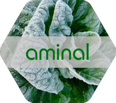Aminal