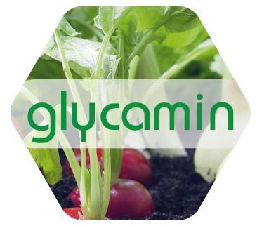 Glycamin