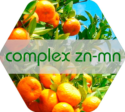 Complex Zn-Mn