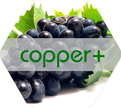 Copper+