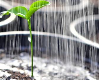 Water and soil amendments