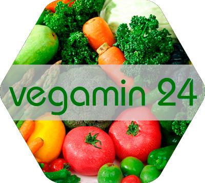 Vegamin 24